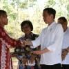 Presiden Minta Penerima Izin Hutan Gunakan Lahan Secara Produktif